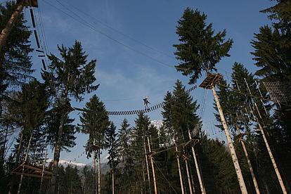 Klettergarten in den Bäumen