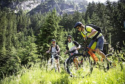Geführte Biketour, Downhill